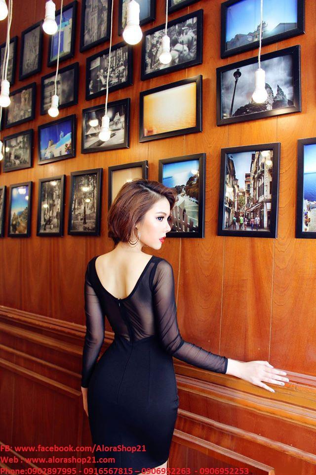 Đầm đen pha lưới tay dài thiết kế ôm body sang trọng - DN245