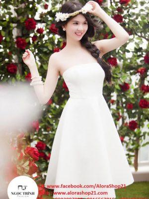 Đầm xòe cúp ngực thiết kế đơn giản sang trọng - DN308