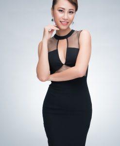Váy đen ôm body cúp ngực phối lưới cut out - DN251