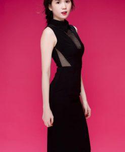Đầm ôm body đen phối lưới sexy quyến rũ như Ngọc Trinh - DN268